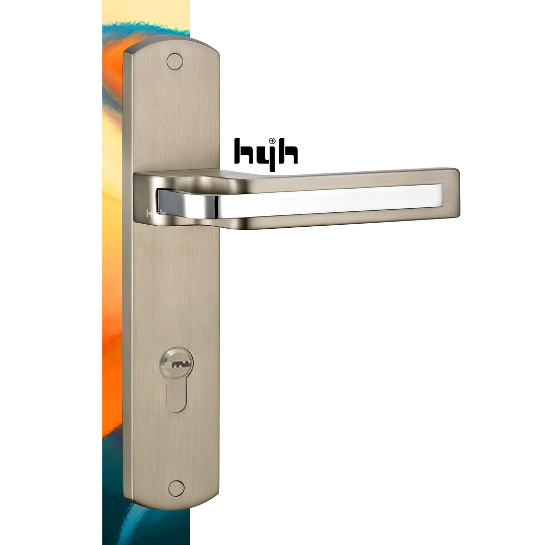 Quality-Assured New Fashion Entrance Plate Door Lock